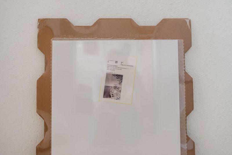 Produkttest Foto-Wandbild von Saal Digital - Das Paket wird ausgepackt